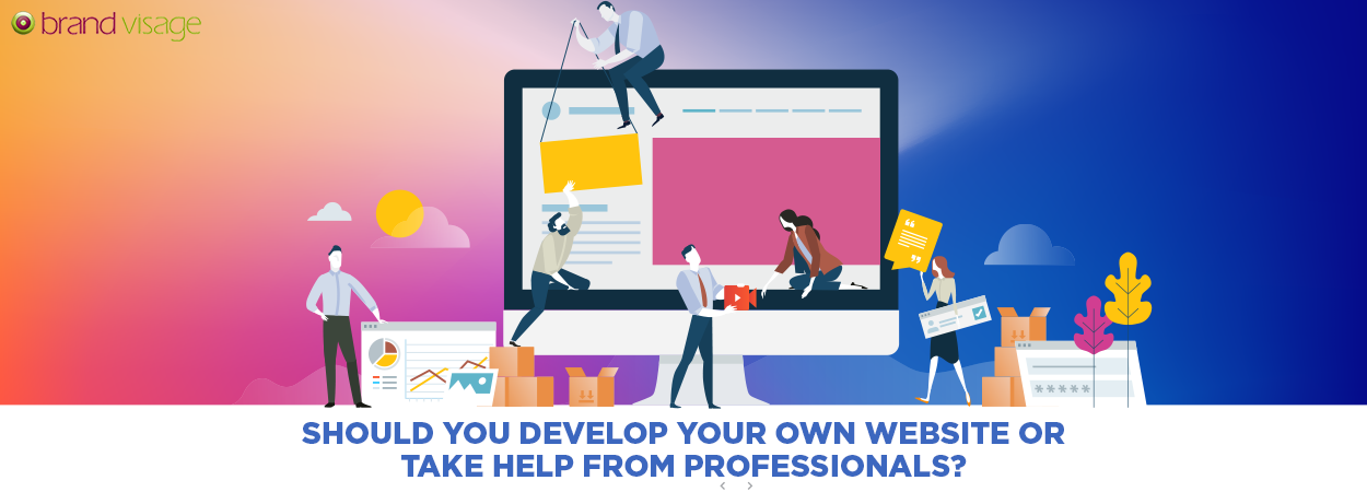 Should you develop your own website or take help from professionals?